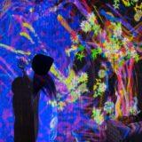 【佐賀 武雄温泉】体験レポート!!御船山楽園で開催のチームラボ「かみさまがすまう森」